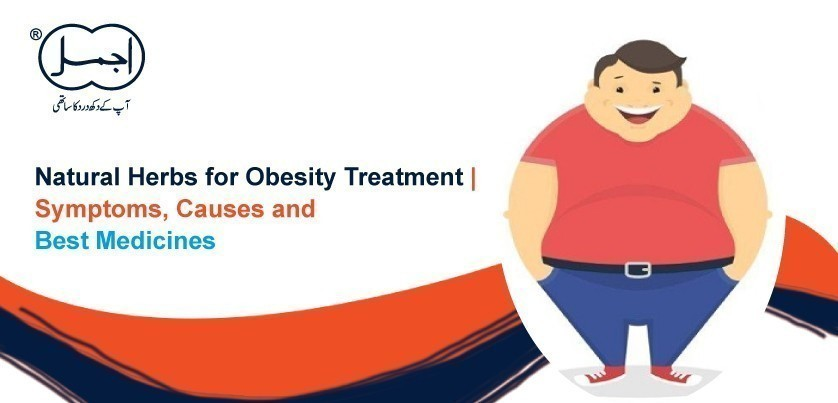 7 Natural Herbs for Obesity Treatment | Symptoms, Causes and Best Medicines